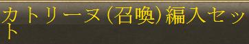 0531召喚