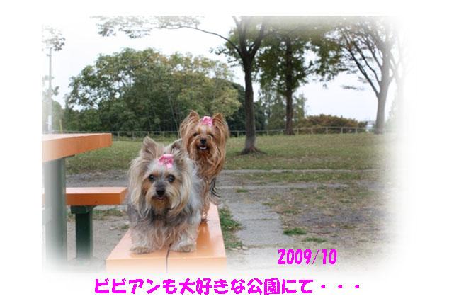 IMG_0298.jpg