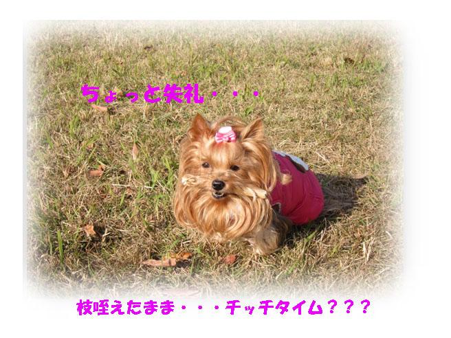 IMG_5474.jpg