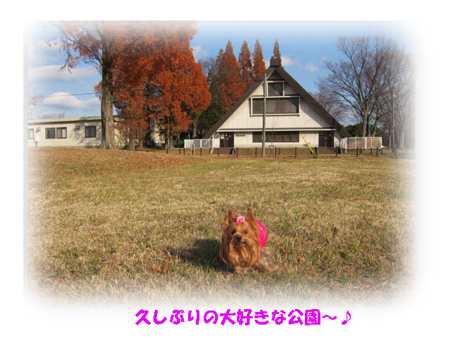IMG_5488.jpg