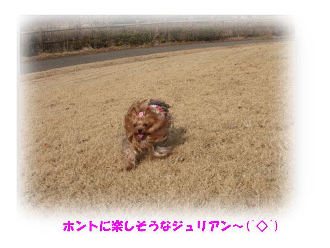 IMG_5847.jpg