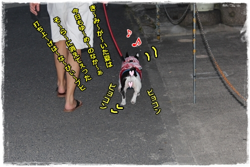 IMG_9897.jpg