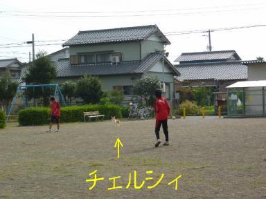 chelsea shun&yuuma101017