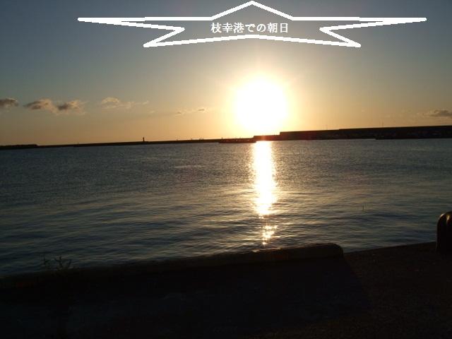 BLOG7184.jpg