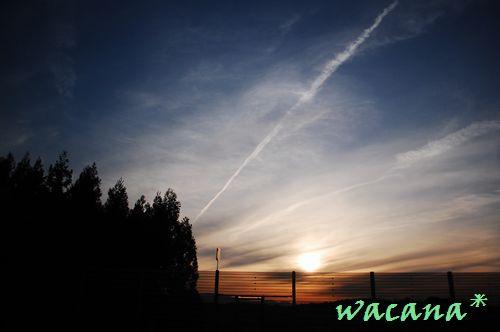 2012.4.14-4.15 IWATEFUKUSHIMA (149)