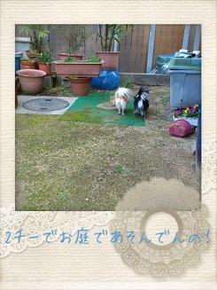 picute20121211131627.jpg