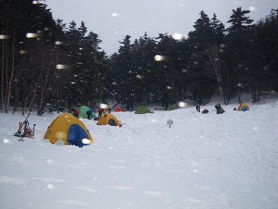 風で雪が舞っている
