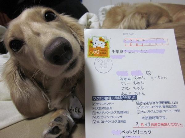 01_20120921074652.jpg