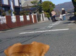 散歩20121227-5