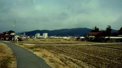 散歩20130126-5