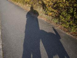 散歩20130127夕ー3