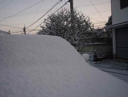 雪が積もってた20130128-1