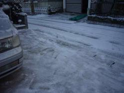 雪が積もってた20130128-3