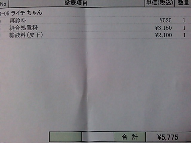 DSC_2857.jpg