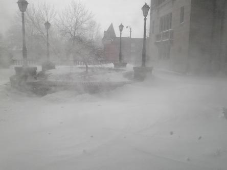 大雪だね3