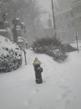 大雪だね2