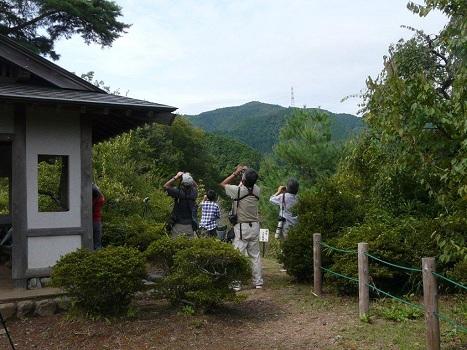 120922タカ渡り観察会(梅の公園)