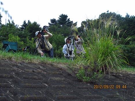 120922タカ渡り観察会(羽村)