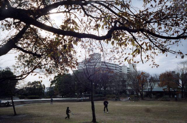 冬景色2014-02d