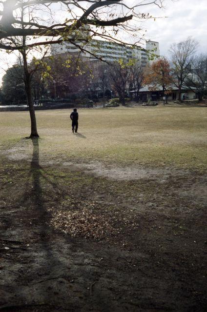冬景色2014-02e