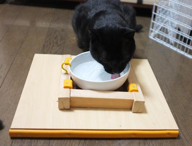 黒猫のユニクロくんも安心してお水を飲んでいます