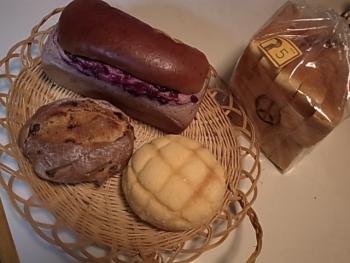 レニーペイン パン
