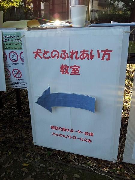 20141122_144149.jpg