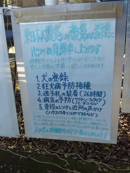 20141122_144155.jpg