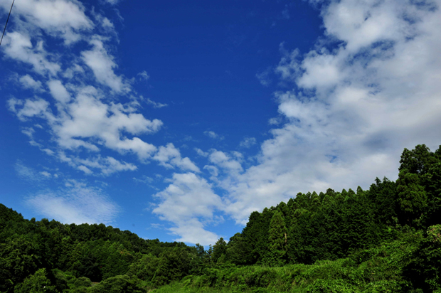 asuka_summer120716b.jpg