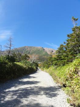 田の原登山道