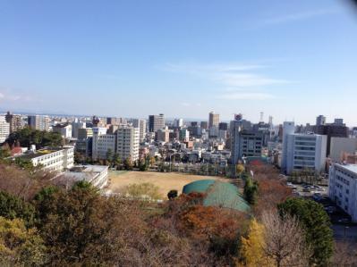 浜松城天守東