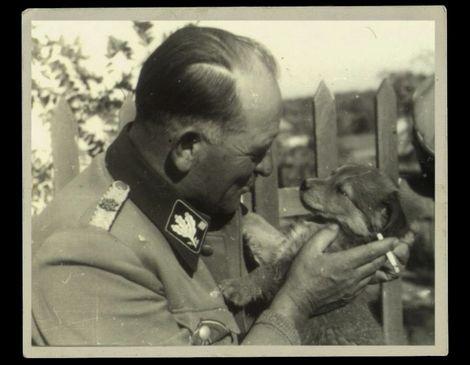 """Josef """"Sepp"""" Dietrich_Obergruppenführer_"""