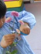 花2014幼稚園