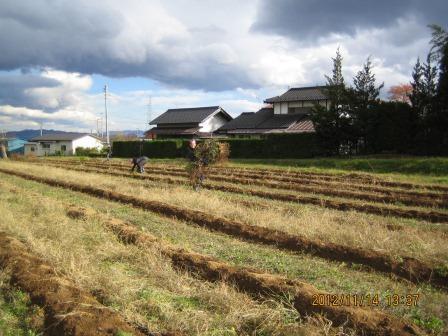 IMG_7400農園支援3