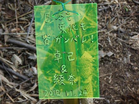 DSCF0142植樹4