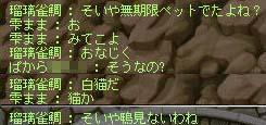o1_20121121105017.jpg