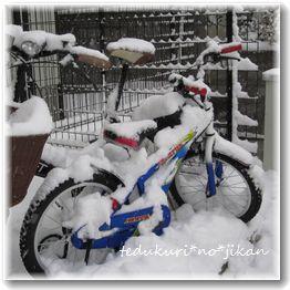 2013 1月の大雪