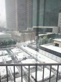 snow@20140208aoyama.jpg