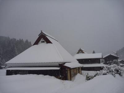 2013-01-27-012.jpg