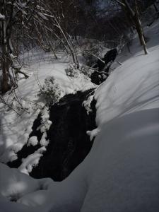 2013-01-27-027.jpg