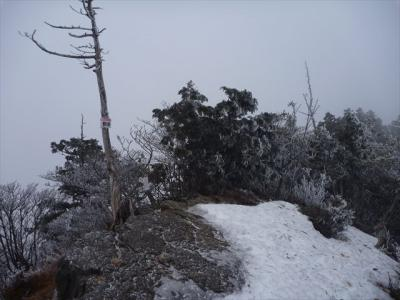 2013-02-03-020.jpg