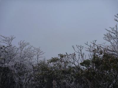 2013-02-03-022.jpg