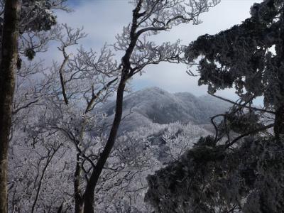 2013-02-03-044.jpg