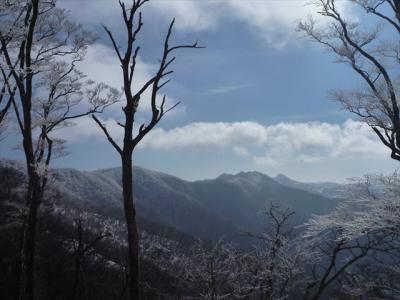 2013-02-03-058.jpg
