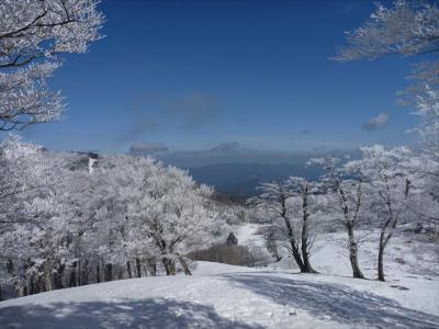 2013-02-03-069.jpg