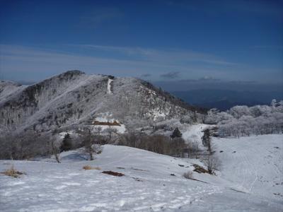 2013-02-03-092.jpg