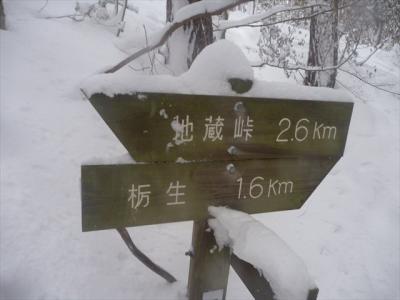 2013-02-24-025.jpg