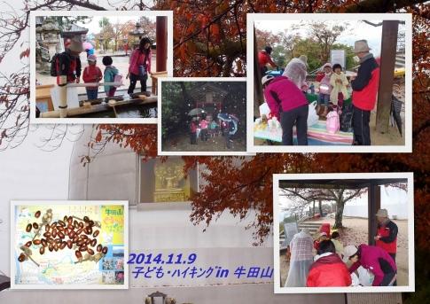 2014-11-010.jpg