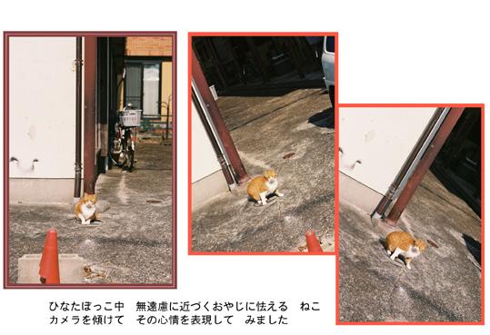 kaerimichi_20130126134303.jpg