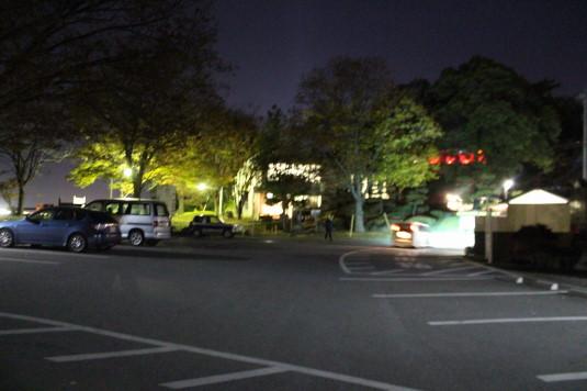 紅葉 信玄堤 ライトアップ 駐車場
